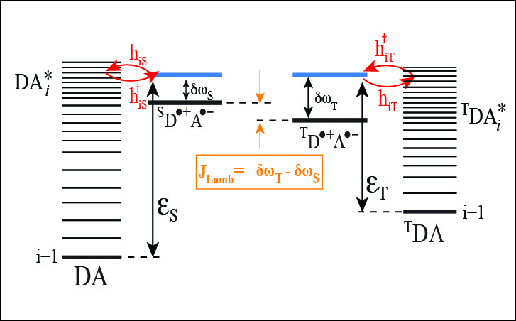 Lamb shift in radical-ion pairs produces a singlet-triplet energy splitting in photosynthetic reaction centers