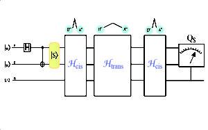 Quantum Physics & Quantum Biology Laboratory