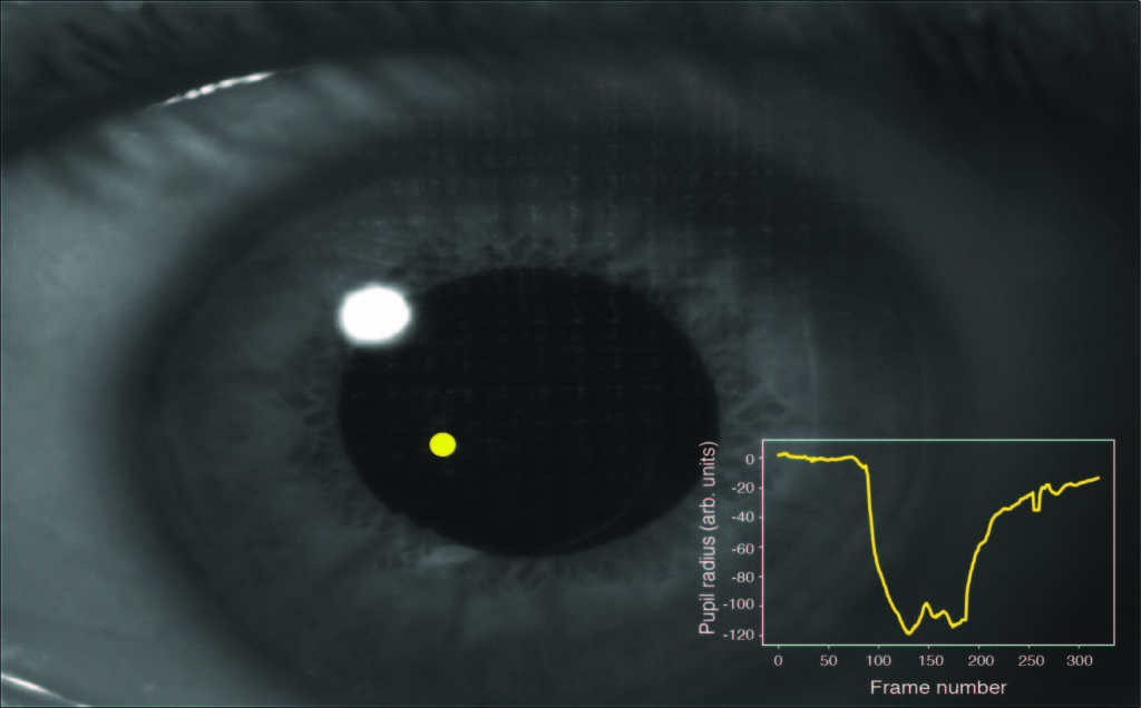 Spatially-selective and quantum-statistics-limited light stimulus for retina biometrics and pupillometry